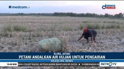 Petani di Blora Rugi Ratusan Juta Akibat Kekeringan