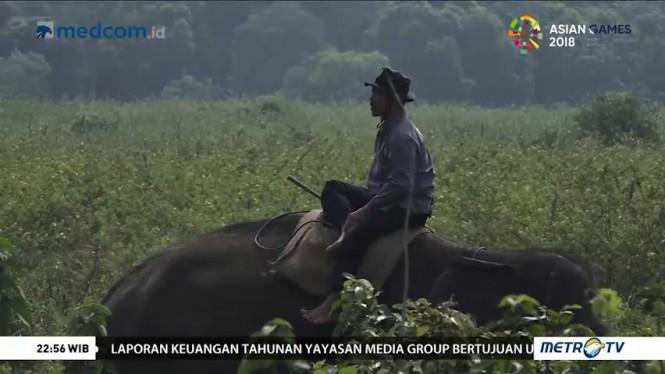 Bersahabat dengan Gajah (3)