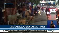 Anies Larang Pedagang Jual Hewan Kurban di Trotoar