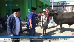 DPP NasDem Sumbang Satu Ekor Sapi ke PCNU Gresik