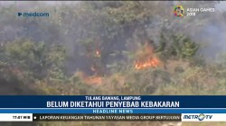 Puluhan Hektare Lahan Gambut di Tulang Bawang Terbakar