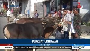 Jokowi Berkurban Sapi 800 Kg di Lombok Timur