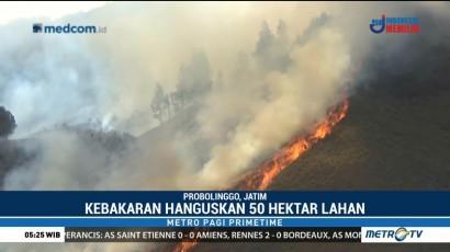 50 Hektare Padang Rumput Gunung Bromo Terbakar