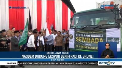 NasDem Dukung Ekspor Benih Padi Hibrida Sembada ke Brunei