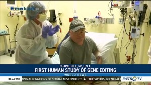 First Human Study of Gene Editing Shows Promise