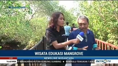 Ekowisata Mangrove di Surabaya