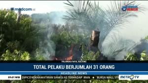 Polda Kalteng Tetapkan 31 Tersangka Pembakar Lahan