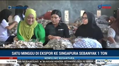 Meraup Pundi-pundi Rupiah dari Camilan Kulit Ikan