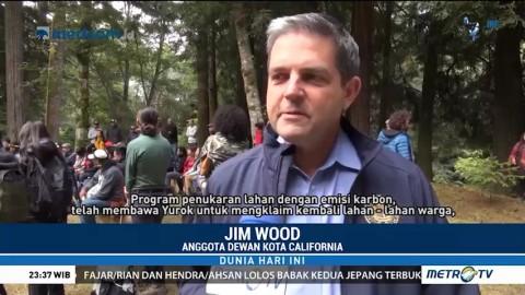 Sistem Kelola Hutan Hadapi Perubahan Iklim di California