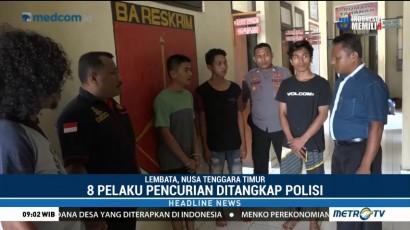 Polisi Tangkap 8 Tersangka Pelaku Sindikat Pencurian di Lembata