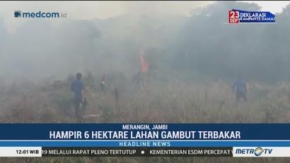 Enam Hektare Lahan Gambut di Merangin Terbakar