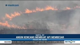 Kebakaran Landa Perbukitan Giriloyo