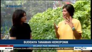 Hidroponik, Siasat Berkebun di Tengah Kota (2)