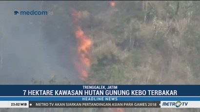 Tujuh Hektare Hutan Gunung Kebo Trenggalek Terbakar