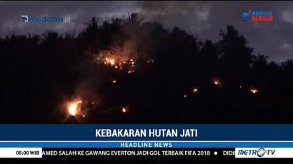Hutan Jati di Majene Terbakar