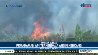 Tiga Hektare Hutan Pinus di Mamasa Terbakar