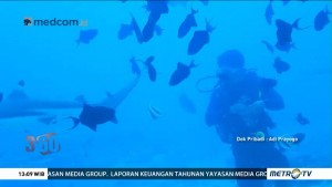 Pro Kontra Perluasan Konservasi Perairan Morotai (1)