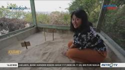 Journey Taman Nasional Wakatobi (2)