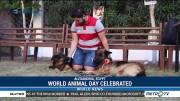 World Animal Day Celebrated