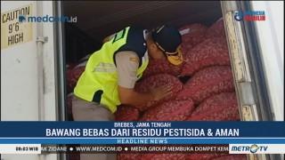 Balai Karantina Pertanian Semarang Sidak Gudang Bawang Merah Ekspor