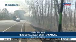 Kebakaran Hutan di Tuban Ganggu Jarak Pandang