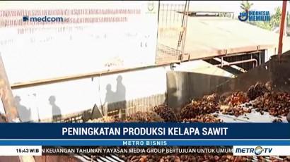 PT Wilmar Siap Tingkatkan Produksi Kelapa Sawit