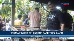 Kopi Bali Tarik Perhatian Turis Asing