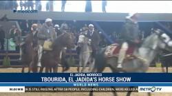 Tbourida, El Jadida's Horse Show
