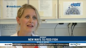 New Ways to Feed Fish