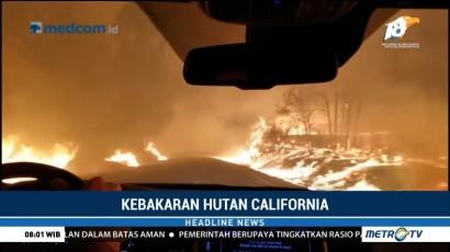 Kebakaran Hutan di California, 5 Orang Tewas