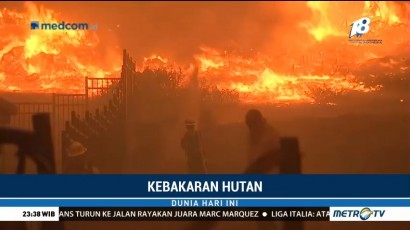 Kebakaran Hutan Ancam Kawasan Elite di California