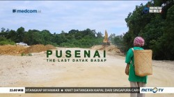 Pusenai, The Last Dayak Basap (3)