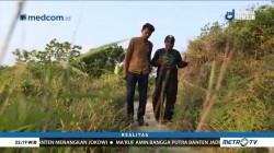 Mimpi Swasembada Beras (2)