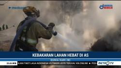 Petugas Berpacu dengan Waktu Padamkan Kebakaran California