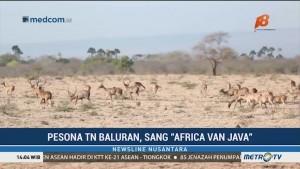 Pesona Africa van Java (1)