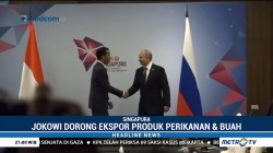 Bertemu Presiden Rusia, Jokowi Dorong Ekspor Produk Perikanan dan Buah