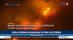 Api Membara di California