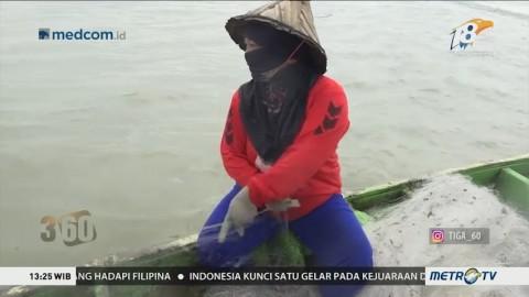 Perjuangan Nelayan Perempuan Mencari Pengakuan (1)