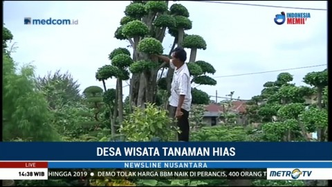 Desa Wisata Tanaman Hias di Deli Serdang