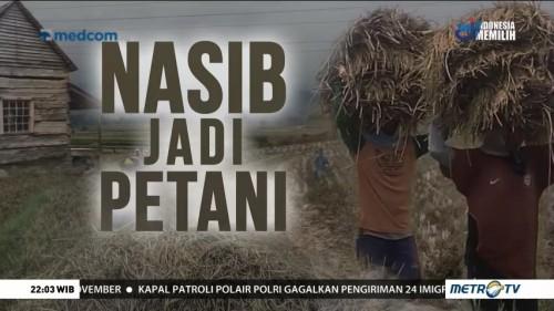 Nasib Jadi Petani (1)