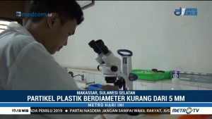 Ikan dan Garam di Laut Sulsel Tercemar Plastik Mikro