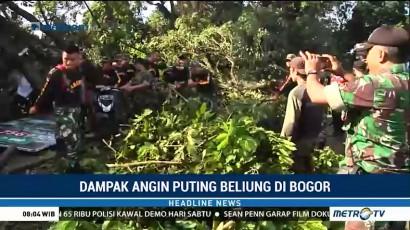 Petugas Bersihkan Pohon Tumbang Akibat Puting Beliung di Bogor