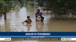 Ratusan Rumah di Pekanbaru Terendam Banjir