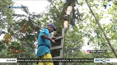 Cerita dari Negeri Bupolo (1)