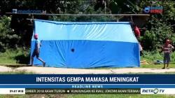 Warga Mamasa Kembali Dirikan Tenda Darurat