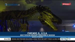 World's Most Popular Dinosaur Transforms at Chicago's Field Museum