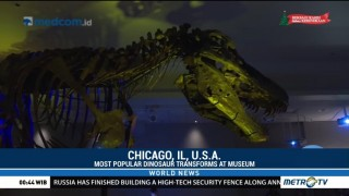 World's Most Popular Dinosaur Transforms at Chicago's Field Museum