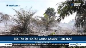 30 Hektare Lahan Gambut di Rokan Hilir Hangus Terbakar