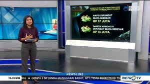 Daftar Kasus Pungutan Liar Korban Tsunami Selat Sunda