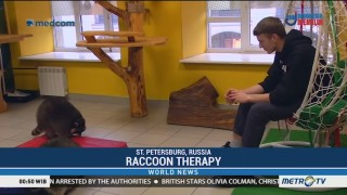 Raccoon Therapy is Helping Kids in Russia